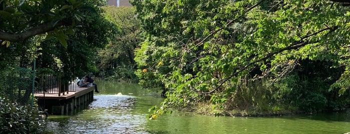 ひょうたん池 is one of สถานที่ที่ Hiro ถูกใจ.