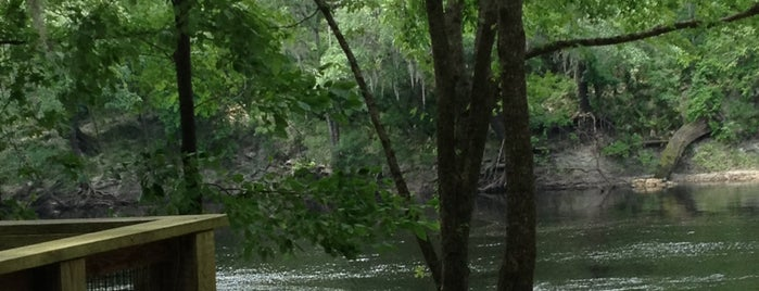 Historic Suwannee River is one of Check in often.