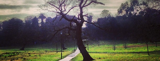 Singleton Park is one of Posti che sono piaciuti a Barry.