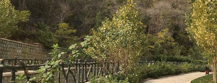 Sasan Park | پارک ساسان is one of Hamiltonさんのお気に入りスポット.
