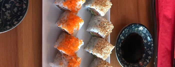 Japonika Sushi is one of istanbul food.