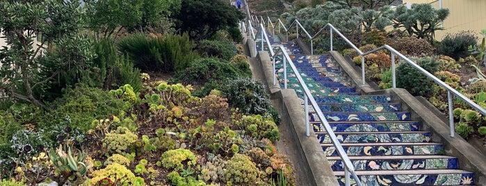 Hidden Garden Mosaic Steps is one of Orte, die Safia gefallen.