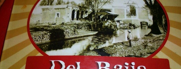 Del Bajio Restaurante is one of Orte, die Alvarock gefallen.