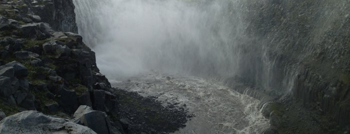Dettifoss is one of Locais curtidos por Erik.