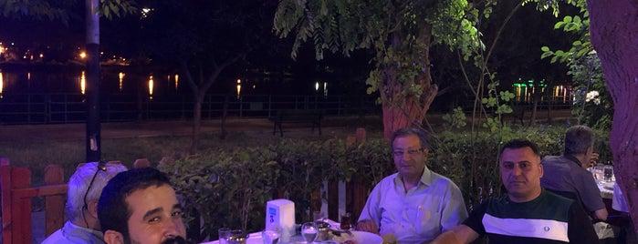 Birecik Sahil Et&Balık Restaurant is one of Şanlıurfa.