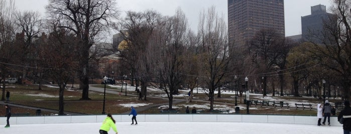 Frog Pond is one of Boston: Fun + Recreation.