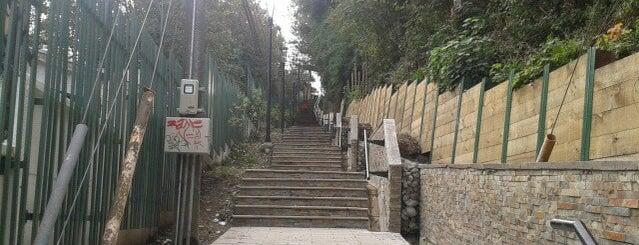 Escalera Calle Rancagua is one of สถานที่ที่ Eduardo ถูกใจ.