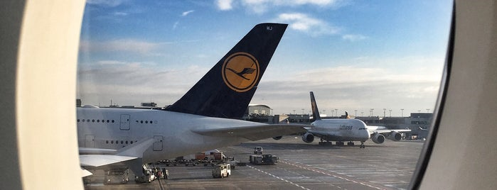 Lufthansa Flight LH 462 is one of 새소식.