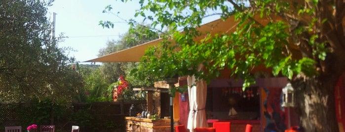 Erenler Sofrası (Yeni Yer) is one of Lugares guardados de Mehdiye.