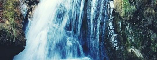 Медовые водопады is one of Roman 님이 좋아한 장소.