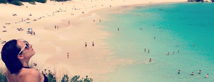 Bermuda is one of Orte, die Rich gefallen.