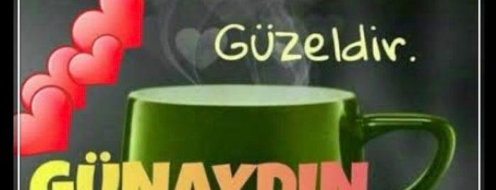 Lokanta Meydan is one of Yurdun 4-1 köşesi.