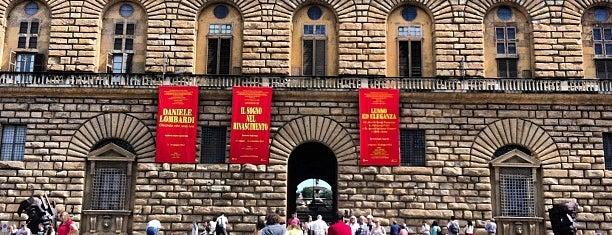 Palacio Pitti is one of Firenze.