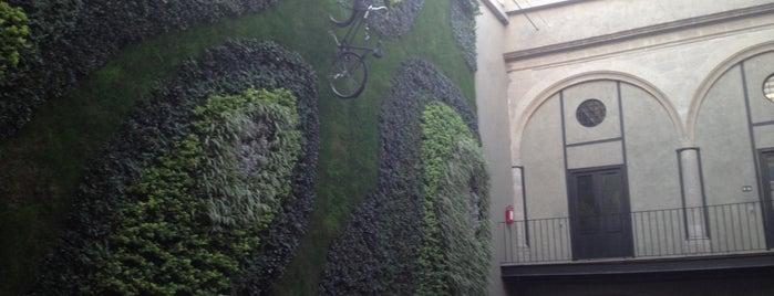 Downtown México is one of Jardines verticales.