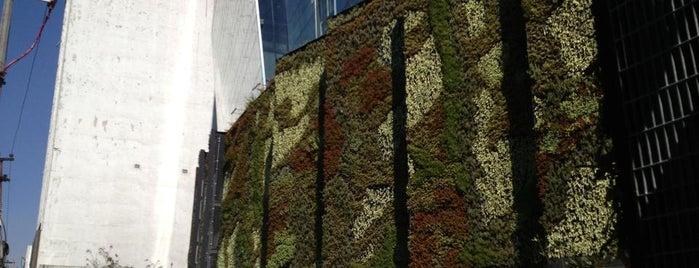 Torre Polanco is one of Jardines verticales.