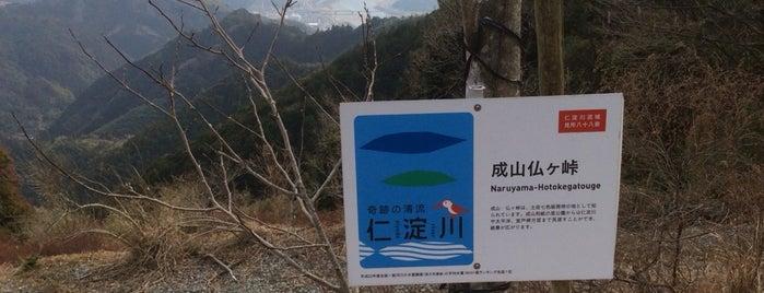 成山仏ケ峠 is one of 四国の酷道・険道・死道・淋道・窮道.