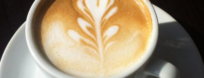Caffetteria dell'Università is one of Caffe/ Gelateria.