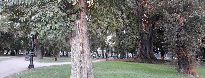 Jardines Palacio Cousiño is one of สถานที่ที่ Luis ถูกใจ.