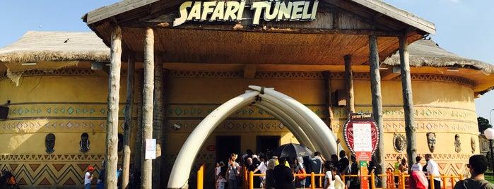 Safari Tüneli is one of Lieux qui ont plu à Sare.