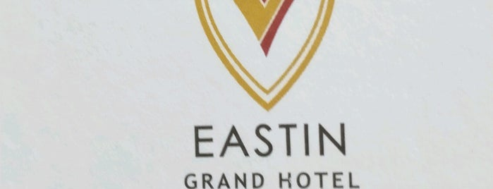 EASTIN Grand Hotel Saigon is one of Locais curtidos por Ayşe.