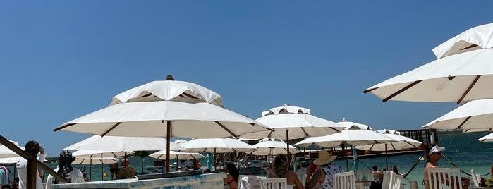 Alchymist Beach Club is one of Jeri 2021.
