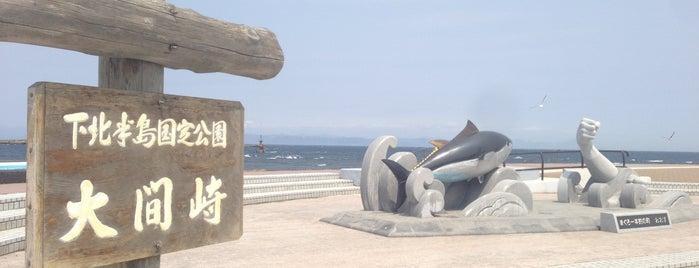 Omazaki Cape is one of Aomori/青森.