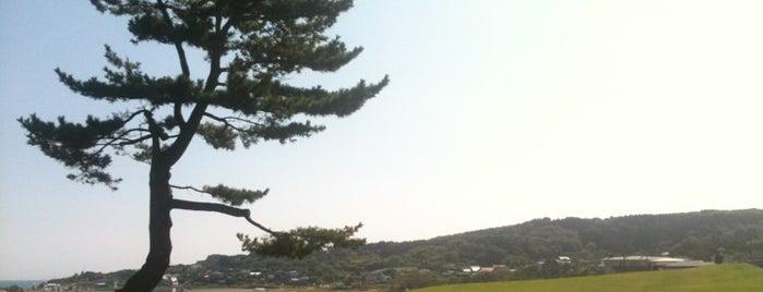 種差海岸 is one of 日本の白砂青松100選.