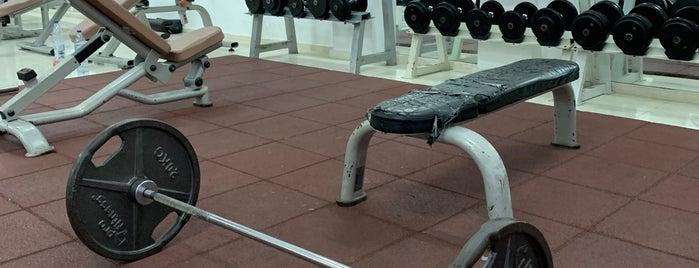 Power Active Gym is one of สถานที่ที่ CNR ถูกใจ.