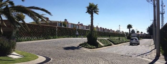 Bosque De Los Encinos is one of สถานที่ที่ Miguel ถูกใจ.