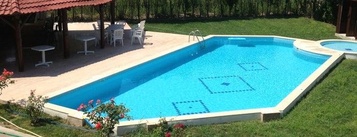 Palmiye Resort Hotel is one of Tempat yang Disukai Olcay.