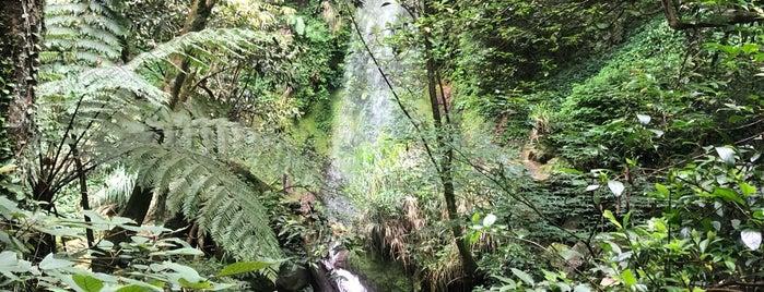 Jyuansih Waterfall is one of Taiwan Maybe.