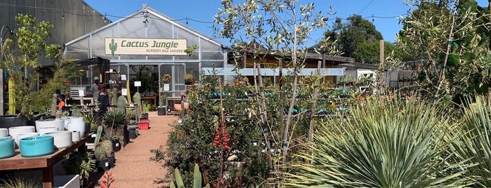 Cactus Jungle is one of Urgent to try SF.