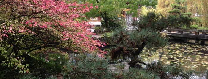 Dr. Sun Yat-Sen Classical Chinese Garden is one of Vancouverite - Best Places In and Around Vancouver.
