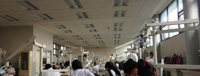 Clinica de Periodoncia is one of สถานที่ที่ Alejandro ถูกใจ.