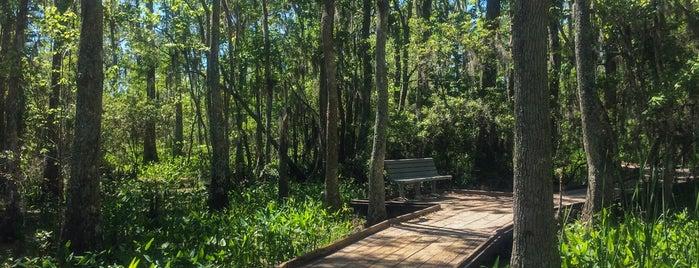 Jean Laffitte National Historical Park & Preserve is one of NOLA.