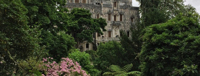 Quinta da Regaleira is one of Locais curtidos por Elena.