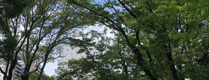 霊巖寺 is one of Find My Tokyo.