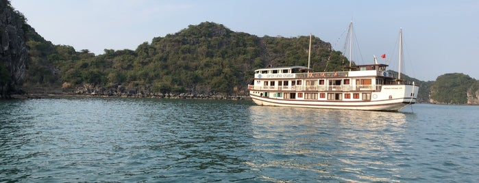 Gray Line Cruise (Anchor) is one of Vietnam.