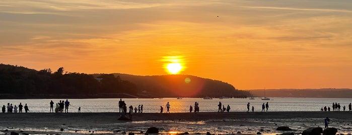 Sandbar to Bar Island is one of Acadia/Bar Harbor, Maine.