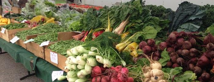 Cambridgeport Farmers Market is one of Posti che sono piaciuti a Enrico.