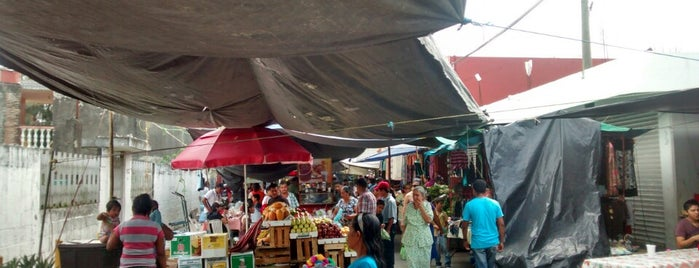 Tianguis Álamo (Plaza) is one of Orte, die Ofo gefallen.