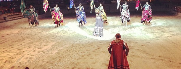 Medieval Times Dinner & Tournament is one of OC's Best.