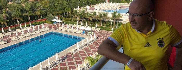 Royal Taj Mahal poolside is one of Locais curtidos por Murat.
