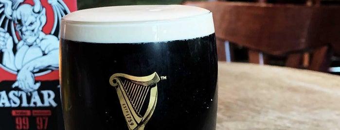 Irish Pub is one of PUBS.