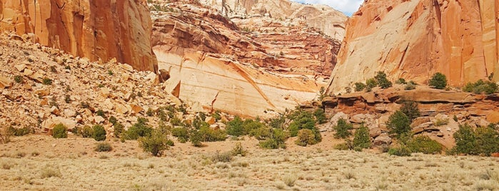 Capitol Reef National Park is one of National Recreation Areas.