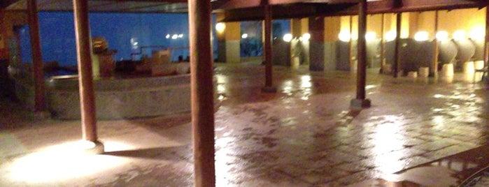 ホテル木暮 is one of Orte, die mnao305 gefallen.