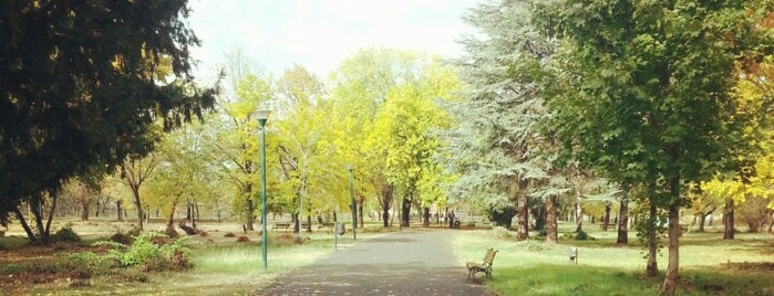 Градски парк / City Park is one of Gidilecekler.