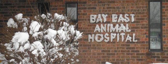 Bay East Animal Hospital is one of Lieux qui ont plu à Sharifa.