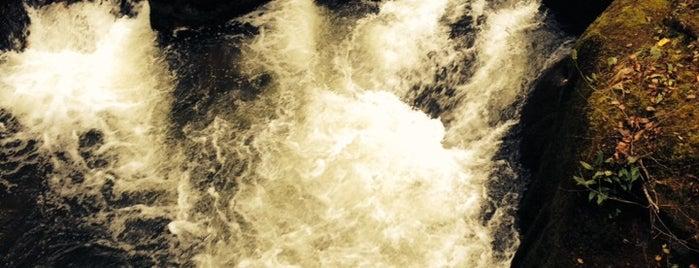 Irreler Wasserfälle is one of Around Rhineland-Palatinate.