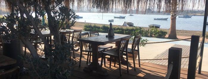 El Mar Coffee & Healthy Living is one of Posti che sono piaciuti a Ozancan.